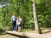Walderlebnispfad Gemünden, Naturpark Spessart