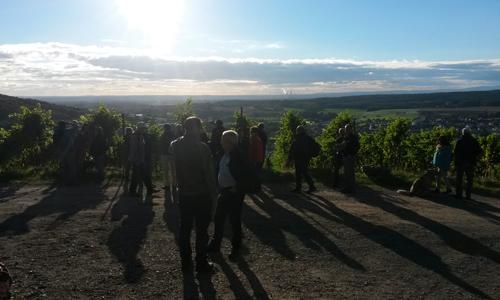 Weinberführung Wo der Papstwein wächst