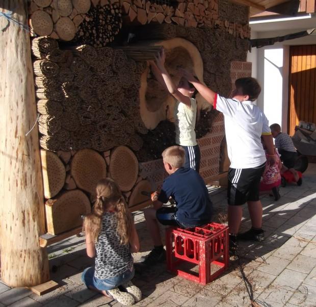 Wildbienen Hotel wissenschaftsjahr1 620x602 Wildbienen