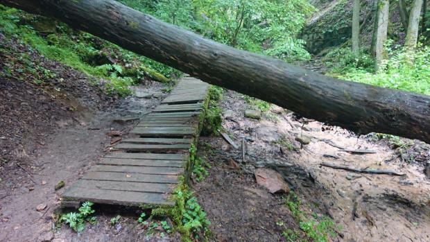 beschädigter Weg Trettstein 620x349 Wegsperrung am Trettstein in Gräfendorf