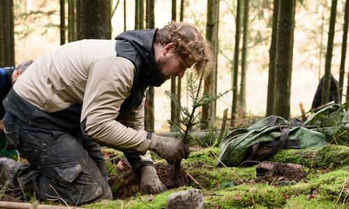 dude aufm boden Bergwaldprojekte im Spessart