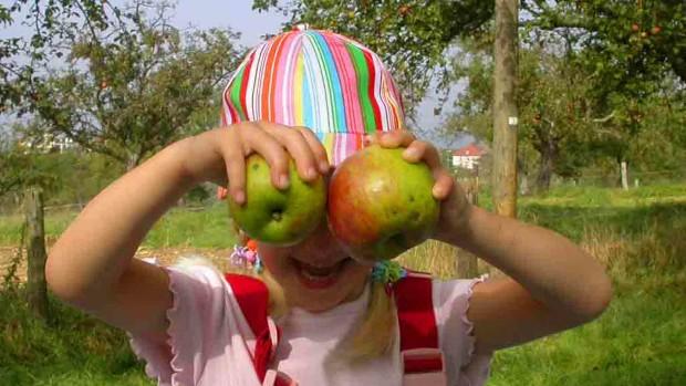 habegger apfelaugen 620x349 Streuobstwiesenfest mit Apfelernte am Godelsberg