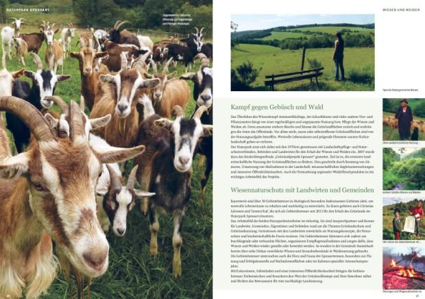 newsletterbeispielseite 620x436 Neue Infobroschüre des Naturparks