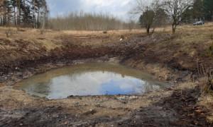 20210311 131917 300x180 Kleingewässer am Bürgersee revitalisiert
