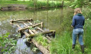 DSC 0025 300x180 EU Life Projekt Feuchtwälder erfolgreich geprüft
