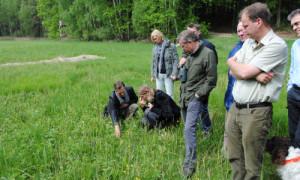 DSC 0028 500x300 300x180 Jetzt für Brandenburger Naturschutzpreis bewerben!