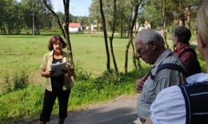 DSC 0061 beitrag 300x180 Geheimnisse einer Landschaft   Wanderung ins Naturschutzgebiet Stechlin