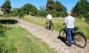 DSC 0423 500x300 300x180 Die schönsten Radtouren im Land Brandenburg