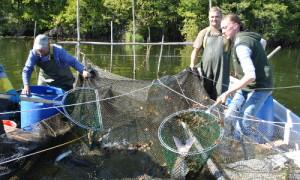Fischerei Tortsee 14 300x180 Christian Wojatzek aus Wittstock/Dosse