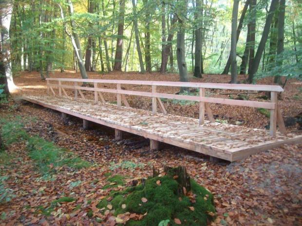 Holzbrücke 620x465 Stechlinsee Rundweg wieder komplett