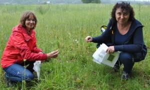 Isabell Hiekel 26 300x180 Grüne Landtagsabgeordnete besucht Naturpark