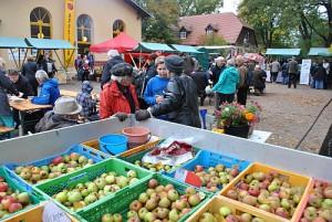 Reges Markttreiben auf dem Friedensplatz zum Apfeltag