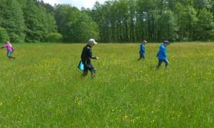 Orchideen AG Kinder 2 300x180 Menzer Naturforscher zusammen mit Ranger Thomas Hahn auf Orchideensuche