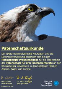 Patenschaftsurkunde Rheinsberger Preussenquelle übernimmt Patenschaft für Fischadler