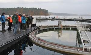 Seelabor 0031 300x180 NaturSchutzFonds Brandenburg zu Gast