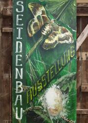 Seidenraupenausstellung Vom Maulbeerbaum zur Seide   Von den Mühen des Seidenbaus in Brandenburg