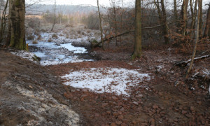 Sohlschwelle Hellsee 500x300 300x180 Hellseemoor bei Rheinsberg wird vor dem Austrocknen bewahrt