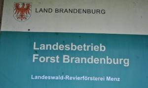 Sprößig 1 05 300x180 Menzer Revierförster Jörg Sprößig in Ruhestand verabschiedet