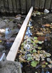 Staubohle Roofensee 03 Stabiler Wasserstand im Roofensee sichert Badewasserqualität