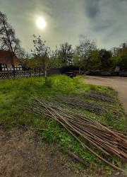 Weidendach2 Weidenhüttenbau   ein Bufdi Projekt