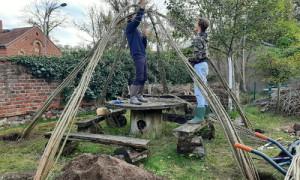 Weidendach61 300x180 Weidenhüttenbau   ein Bufdi Projekt