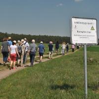 """""""Anwandern in der Kyritz-Ruppiner Heide"""""""