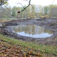Revitalisierung Kleingewässer Bürgersee