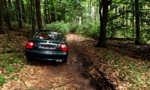 auto im wald 300x180 Ungetrübter Ferienspaß im Naturschutzgebiet Stechlin