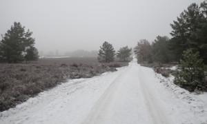 foto1 300x180 Winterwanderung in die Kyritz Ruppiner Heide