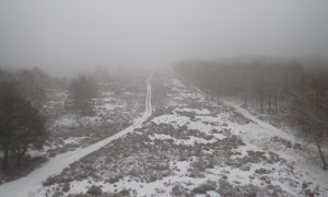foto3 300x180 Winterwanderung in die Kyritz Ruppiner Heide