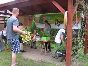 """Neben der """"Alten Sorten-Fragestunde"""" hat auch die Tomatenpflanzenbörse im Mai Tradition."""