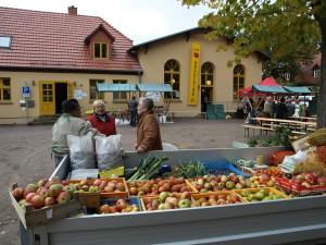Der Menzer Apfeltag findet in diesem Jahr bereits zum zehnten Mal statt.