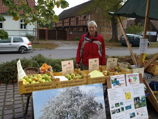k PA174912 620x465 11. Tag des Apfels im Naturpark Stechlin Ruppiner Land