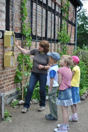 Karin Schlösser erklärt die Wunderwelt im Insektenhotel.