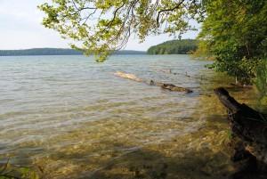 Der Stechlin -bedeutendster Klarwassersee Brandenburgs.