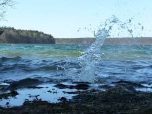 Hoch schlagen die Wellen am Stechlin (Autor: Thomas Gonsiorczyk)