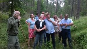 Revierförster Jörg Sprößig erklärt die naturnahe Waldwirtschaft im NSG Stechlin