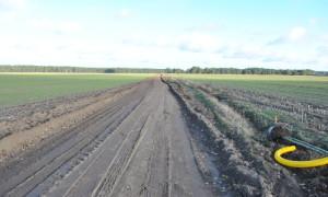 kahle acker 300x180 Zuwegung zur Kyritz Ruppiner Heide wird bepflanzt
