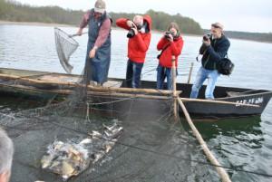 kummreuse2 300x201 Naturschutz und Fischerei in einem Boot