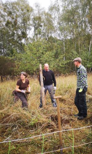 nachpflanzung 300x500 Freiwilligeneinsatz auf der Streuobstwiese Grünhof
