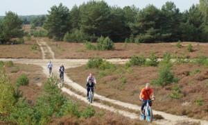 radfahrer 300x180 Unterwegs in der Kyritz Ruppiner Heide