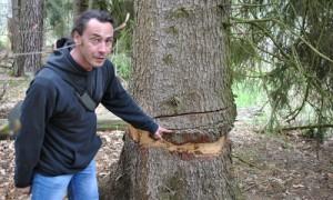 ringeln 300x180 Bereisung im EU Life Projekt Feuchtwälder