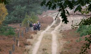 schule in der heide 2 300x180 Grundschüler aus Walsleben und Wildberg erkundeten die Kyritz Ruppiner Heide