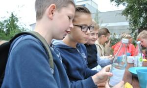 verkostung 300x180 Menzer Naturparkschule besucht Rheinsberger Preussenquelle