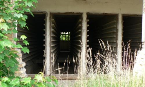 Blankenberg Interim Neue Foto Ausstellung im Naturparkzentrum