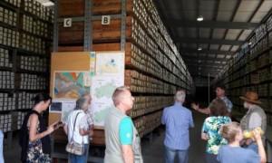 Besucher in der geologischen Landessammlung
