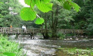 Brücke im Warnowtal