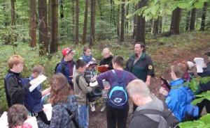 Waldwanderung    Copyright: Naturpark Sternberger Seenland