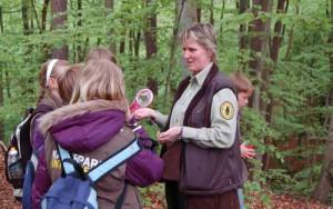 Waldführung mit Kindern     Copyright: Naturpark Sternberger Seenland