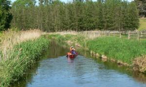 Copyright: Naturpark Sternberger Seenland